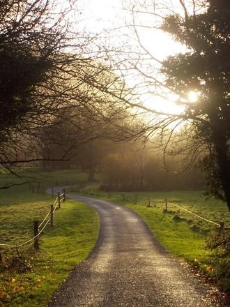 ireland-road-1380360